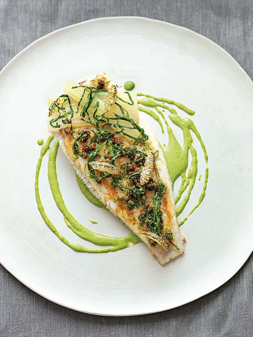 Lemon sole with parsley sauce food and travel for Sole fish recipes