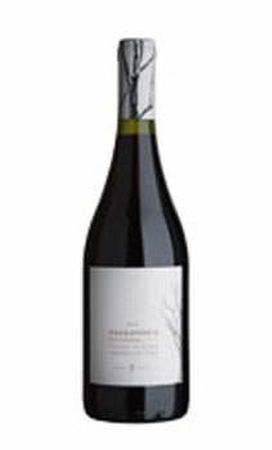 Barrandica Pinot Noir Copy